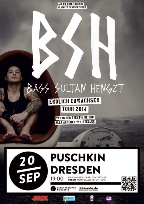Flyer BSH (BASS SULTAN HENGZT)
